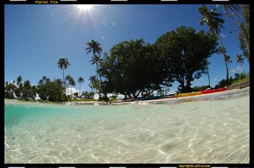 マーシャル諸島 マジュロ環礁 ダイビング 2006/08/16 (1)ロンロン・レイク