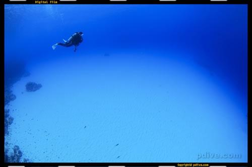 マーシャル諸島 アルノ環礁 ダイビング 2006/08/17 (2)アルノアルノ