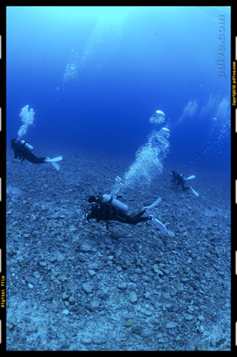 マーシャル諸島 ミリ環礁 ダイビング 2006/10/10 (4)Manta spot