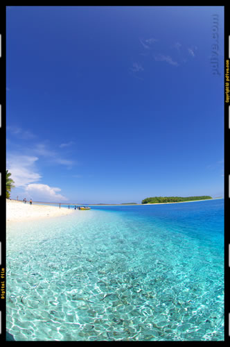マーシャル諸島 ミリ環礁 2006/10/11 陸上撮影(エジェルワン島)