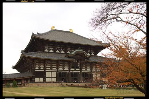 奈良撮影旅行 2006/11/25 世界遺産「東大寺大仏殿」