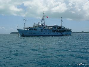 パラオ ダイビングクルーズ旅行 2007/2/11 ビッグブルーエキスプローラー号